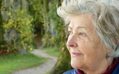Senior Care Services To Consider For Your Aging Parents